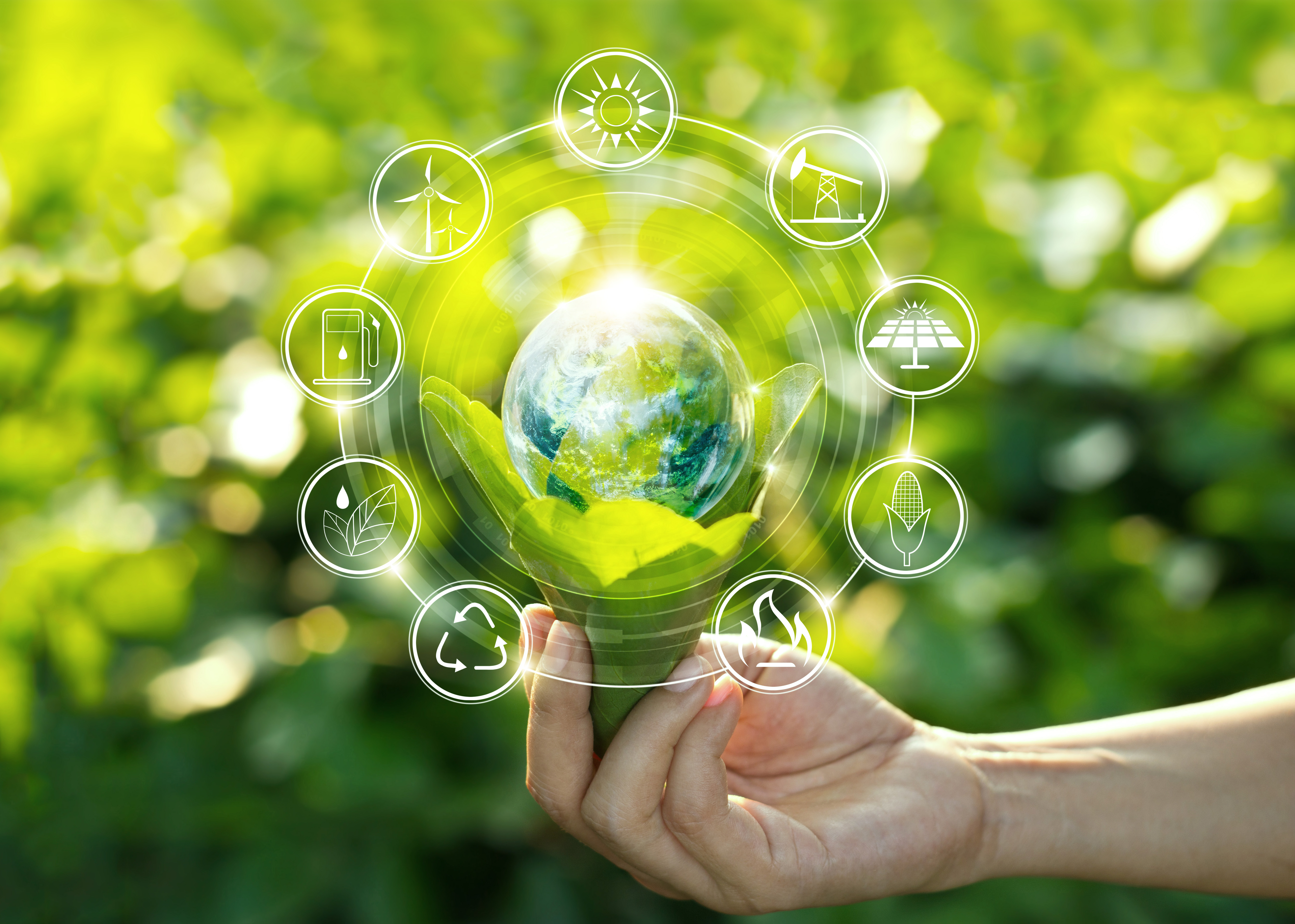 Zo krijgen groene activiteiten echt impact